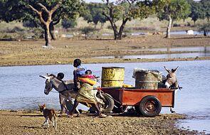 ONZ ostrzega przed klęską głodu w krajach Afryki