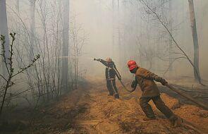 Ukraina: w strefie czarnobylskiej nadal tlą się pnie, trawa i drewno