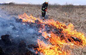 Podlaskie: kolejny dzień gaszenia pożaru w Biebrzańskim Parku Narodowym