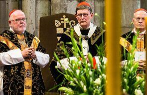 Prokuratura odmawia dochodzenia przeciwko kardynałowi Woelkiemu