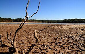 Pięć największych polskich rzek ma dramatycznie niski poziom wody. Ekspert: nie pamiętam tak złej sytuacji