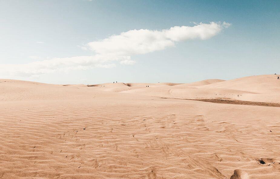 Przerażające dane raportu o zmianach klimatu: ⅓ ludzkości będzie żyć jak na Saharze