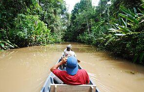 """Biskupi organizują kampanię """"Amazonia cię potrzebuje!"""""""