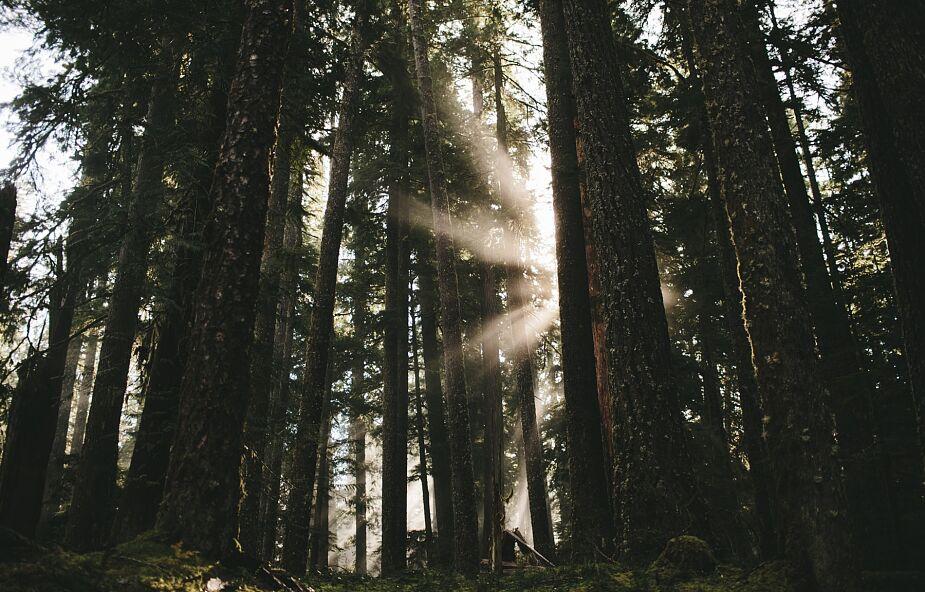 Po co nam Duch święty?