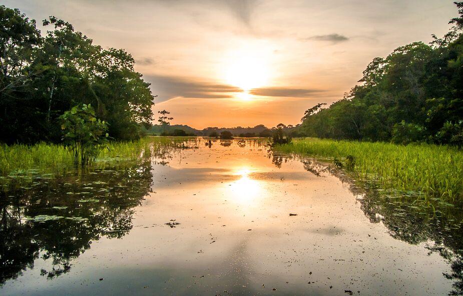 Brazyliia: pandemia boleśnie doświadcza Amazonię