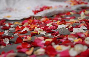 Kościół jednego dnia zniszczy kilogramy kwiatów tylko po to, żeby tradycja została zachowana