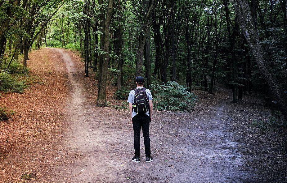 Czym jest paradoks wyboru i jak sobie z nim radzić?