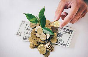 Zielone pułapki. Czym są greenwashing i zielony kapitalizm?