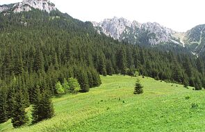 Tatry: trzech grotołazów utknęło w Jaskini Czarnej