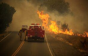 Pożary w Kalifornii strawiły ponad 1,6 mln ha od początku roku