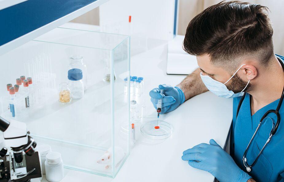 WHO informuje o kolejnym rekordowym dziennym przyroście zakażeń koronawirusem