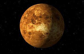 Na Wenus wykryto cząsteczki, które mogą mieć biologiczne pochodzenie