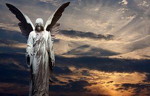 Aniołowie tęsknią za nami