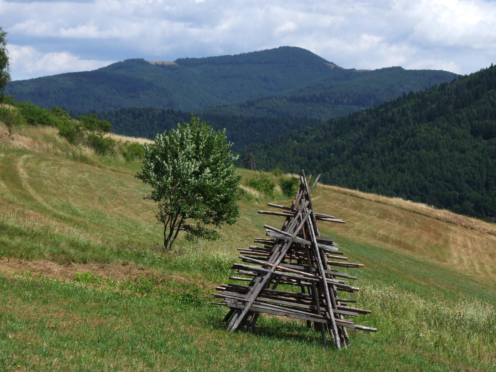 Mogielica (fot. Jerzy Opioła / Wikimedia Commons / CC BY-SA 4.0)