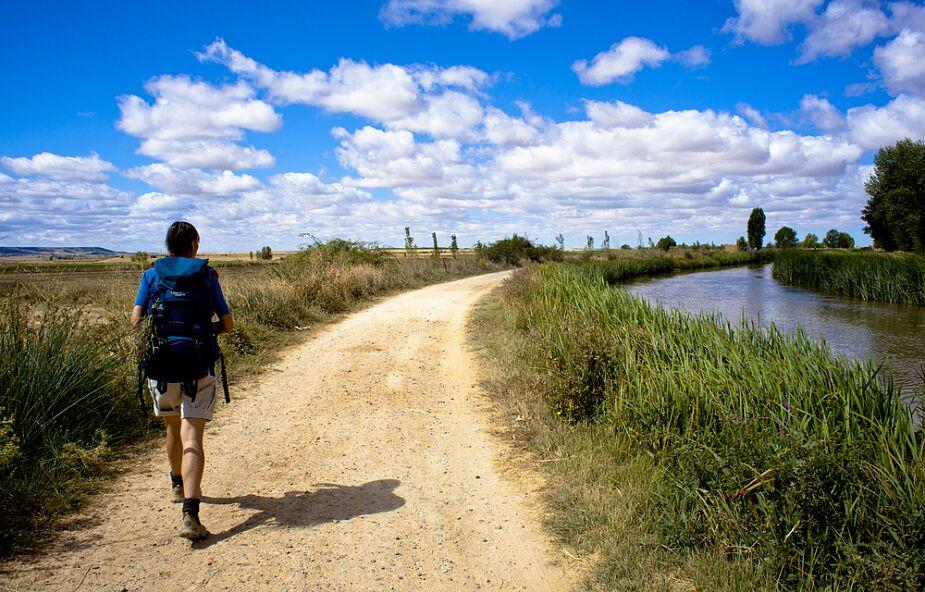 Camino daje wolność. Wędrując do Santiago de Compostela