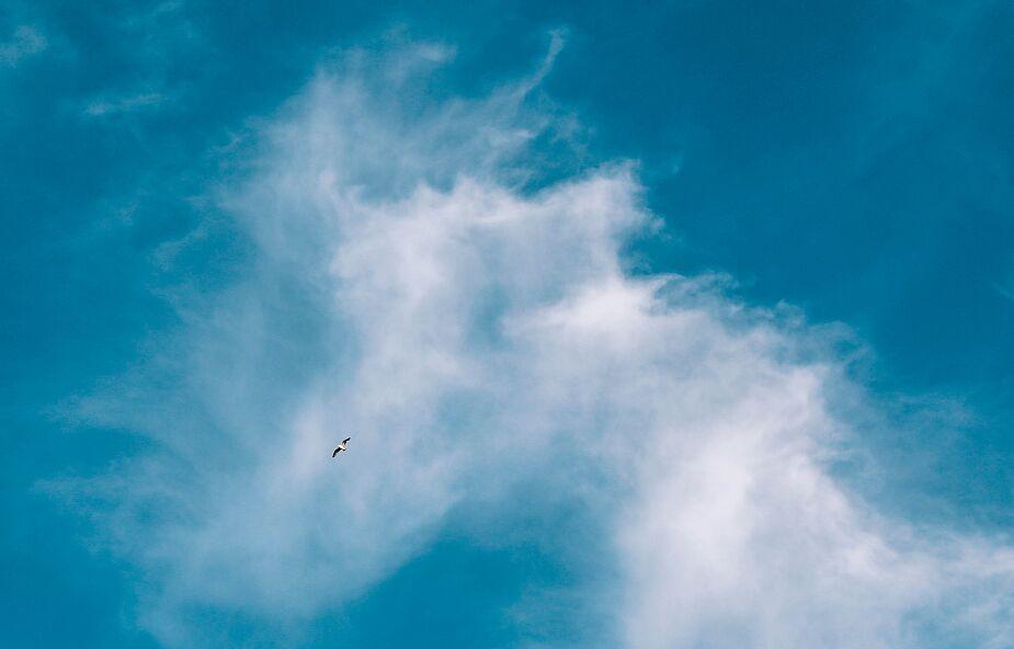 """Jak często """"patrzysz w niebo""""?"""