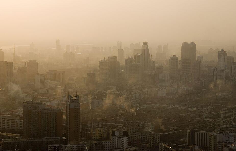 3 aplikacje, które pomogą sprawdzić jakoś powietrza
