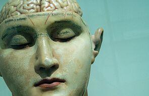 Ludzki mózg niespodziewanie zmniejszył swoją objętość