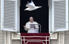 Papież: znaki Bożej harmonii obecne są w świecie przyrody