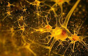 """""""Rozrusznik mózgu"""" pomógł pacjentce wyjść z ciężkiej depresji"""