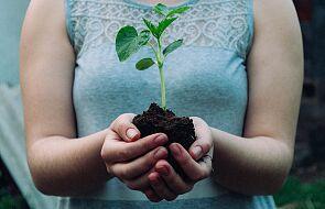 Ekologiczne rekolekcje wielkopostne #1 - Bóg stworzył świat, który jest dobry