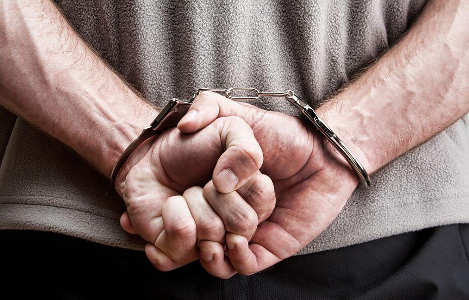 Nawalny będzie odbywał wyrok w obwodzie włodzimierskim