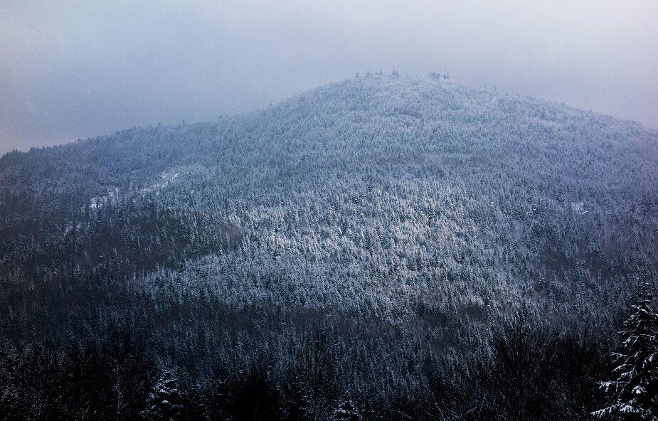 Trudne warunki w wyższych partiach gór; w dolinach odwilż
