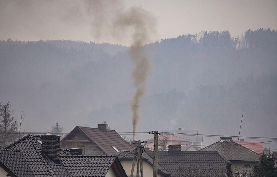 W Polsce dziesiątki tysięcy ludzi rocznie umiera z powodu smogu. To poważny moralny problem [WYWIAD]