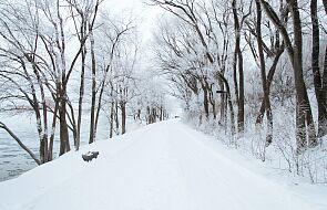 IMGW; intensywne opady śniegu na Dolnym Śląsku i w Małopolsce