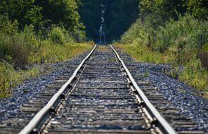 Egipt: 32 zabitych, 66 rannych w katastrofie kolejowej