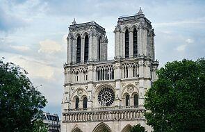 Katedra Notre Dame: przygotowania do odbudowy trwają