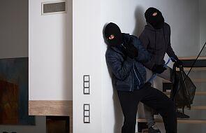 Z powodu pandemii w Holandiispadła liczba włamań do mieszkań