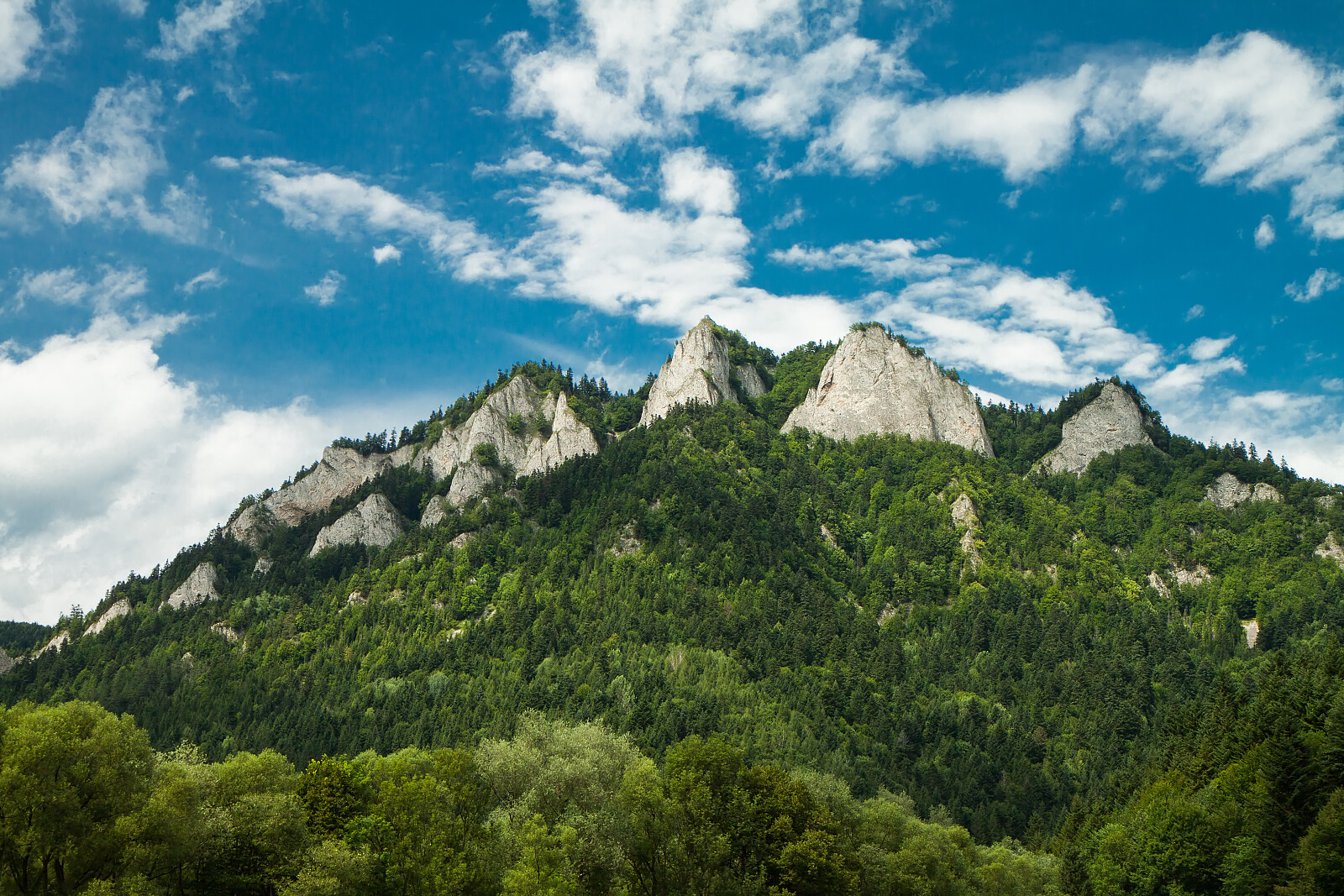 View to Three Crowns Massif in Pieniny National Park, Slovakia /