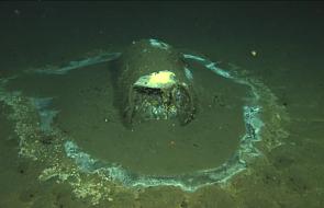 Ekobomba na dnie oceanu