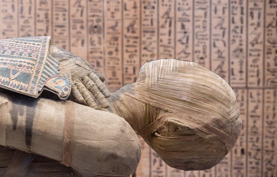 Wyjątkowa egipska mumia została odkryta przez polskich naukowców