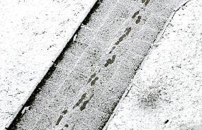 IMGW: za oknami zima, a kiedy wróci wiosna?