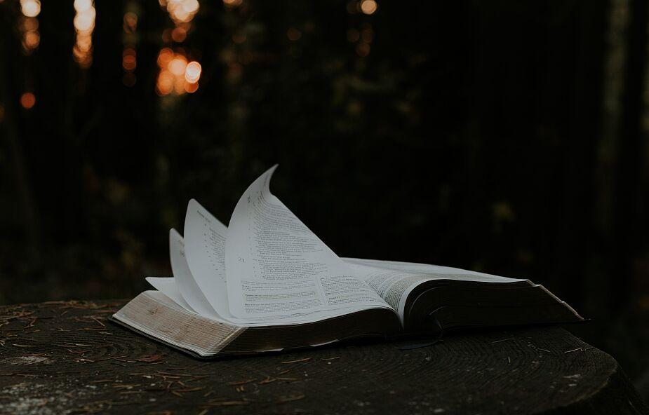 Ten fragment Pisma świętego jest instrukcją obsługi chrześcijańskiego życia