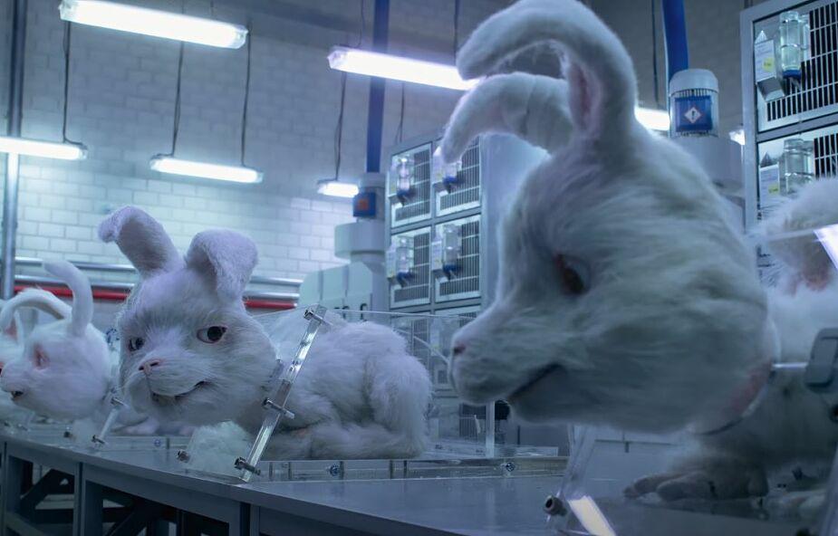 """Ta animacja pokazuje, jak wygląda testowanie kosmetyków na zwierzętach. """"Rozdziera serce"""""""