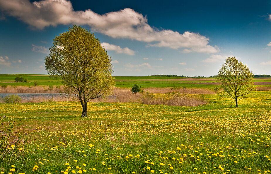 Klimat w Polsce zmienia się na naszych oczach. Rośnie liczba upalnych dni
