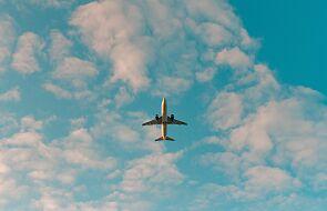 Podróż do Holandii na razie bez obowiązkowej kwarantanny