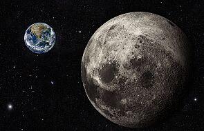 """Japończycy wysyłają """"transformersa"""" na Księżyc. Srebrny Glob będzie pełen robotów"""