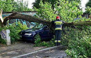Nawałnice na północy Polski. 18 interwencji strażaków w ciągu jednej godziny