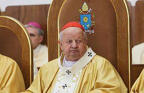 Watykan. Specjalna komisja bada sprawę kard. Dziwisza