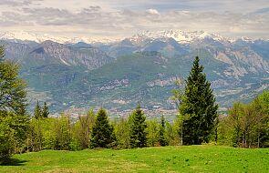 Tatrzański Park Edukacyjny. Można podziwiać górskie zwierzęta nie wychodząc w góry