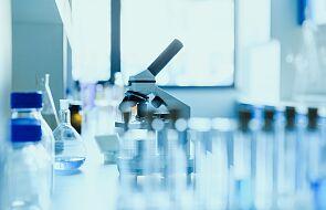 Naukowcy odkryli białko, które może zatrzymać przerzuty