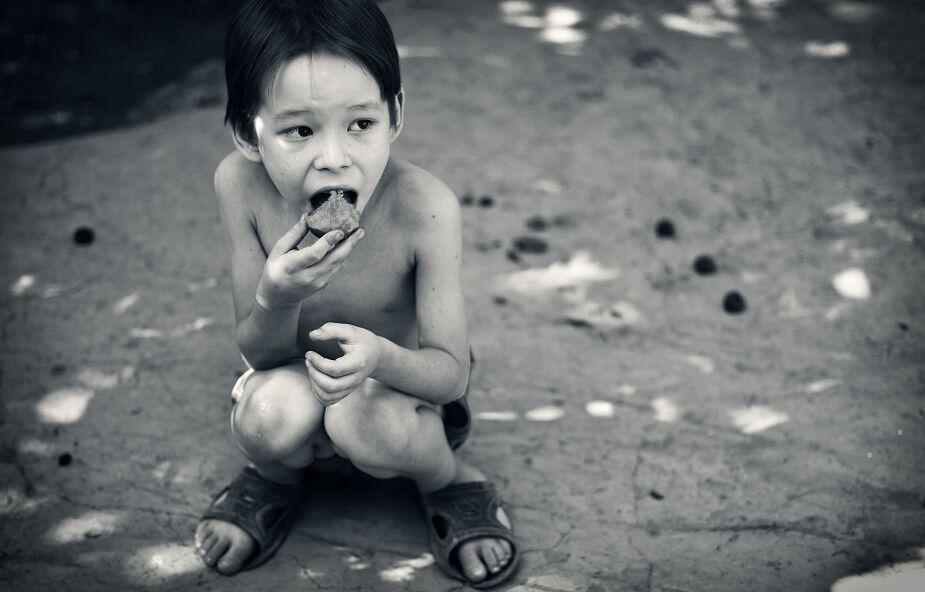 Głód na świecie. Dlaczego ciągle wzrasta?