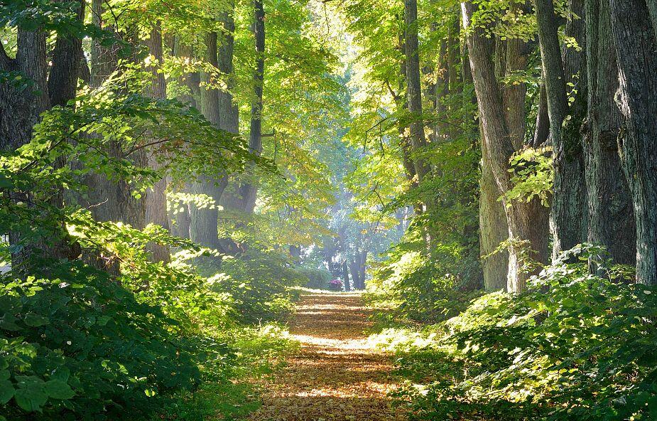 Jak odnaleźć wewnętrzny spokój i źródło siły w sobie? Oto 5 prostych sposobów