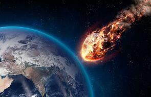 Wiemy, co zabiło dinozaury. Ta asteroida była prawdziwym gigantem