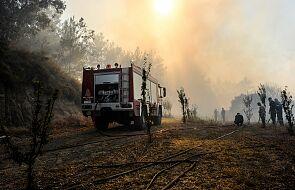 Największe od ponad 30 lat upały. Grecja walczy z pożarami