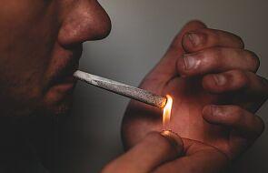 Biskupi Argentyny nie zgadzają się na legalizację marihuany